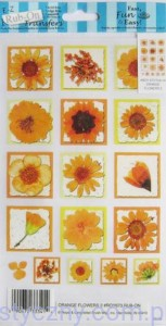 Rub-On Transfers - Rubonsy Kalkomania - ORANGE FLOWERS